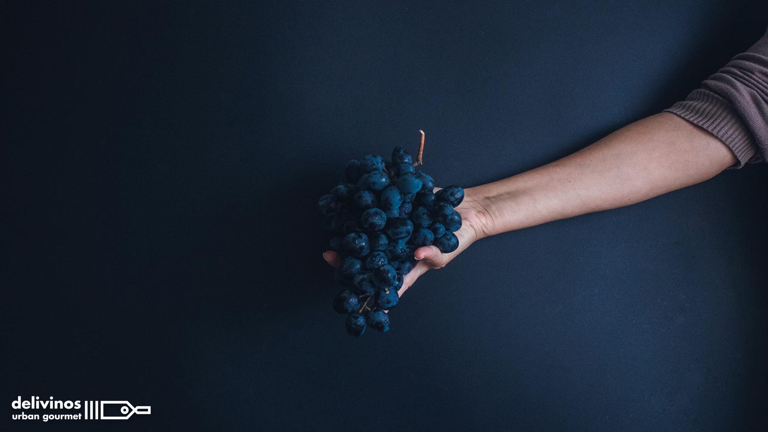 01_Conoce la uva tinta Mencía