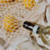 01-Consejos para beber vinos en verano